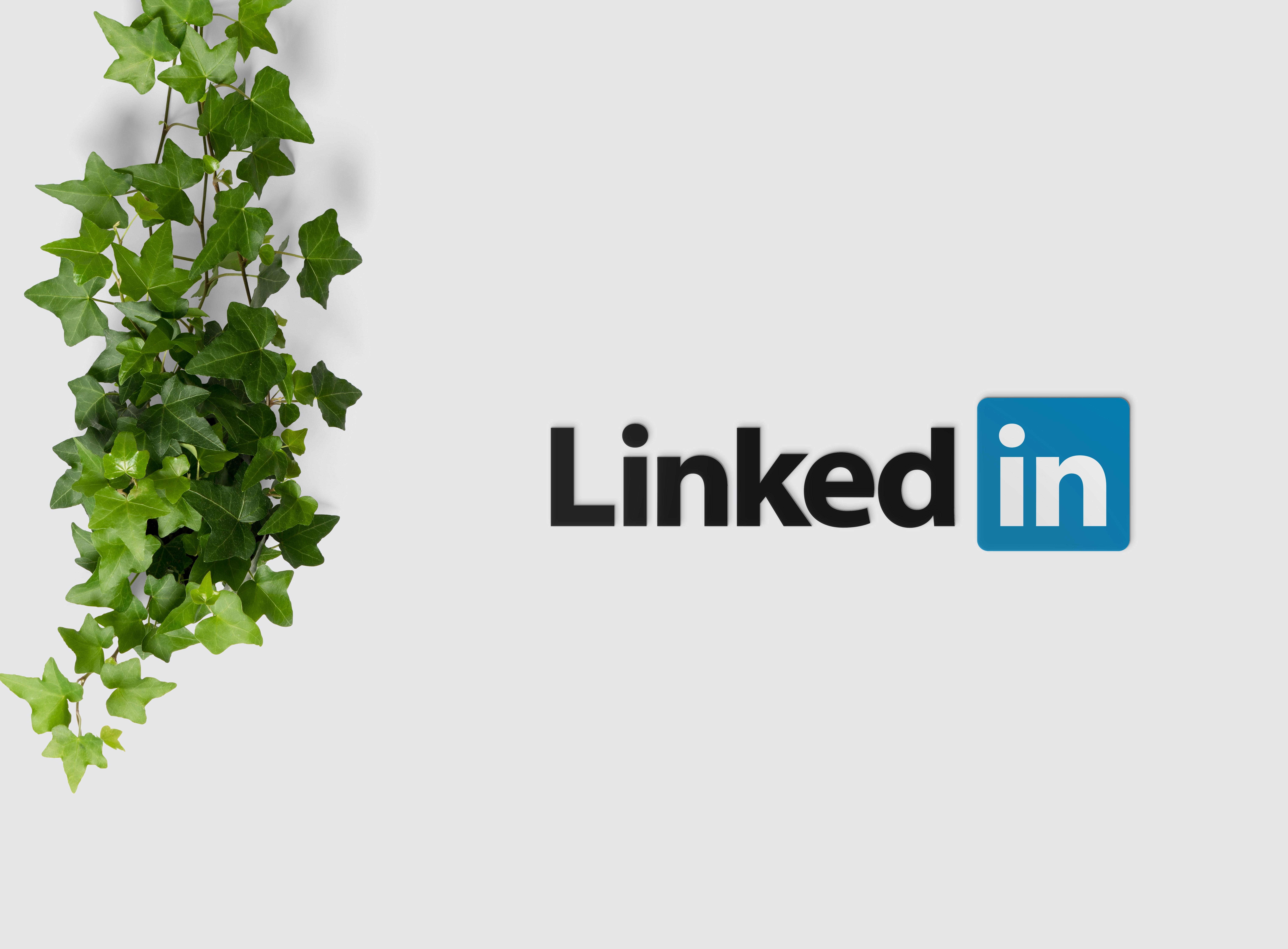 LinkedIn per a empreses